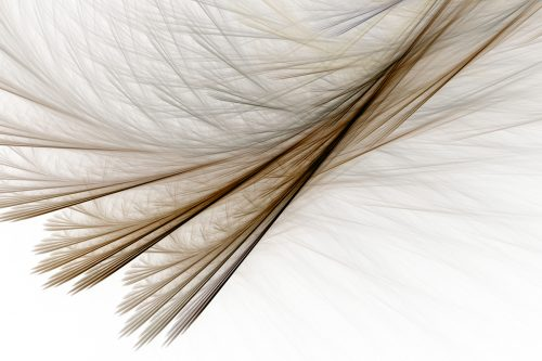 Feathery Layers